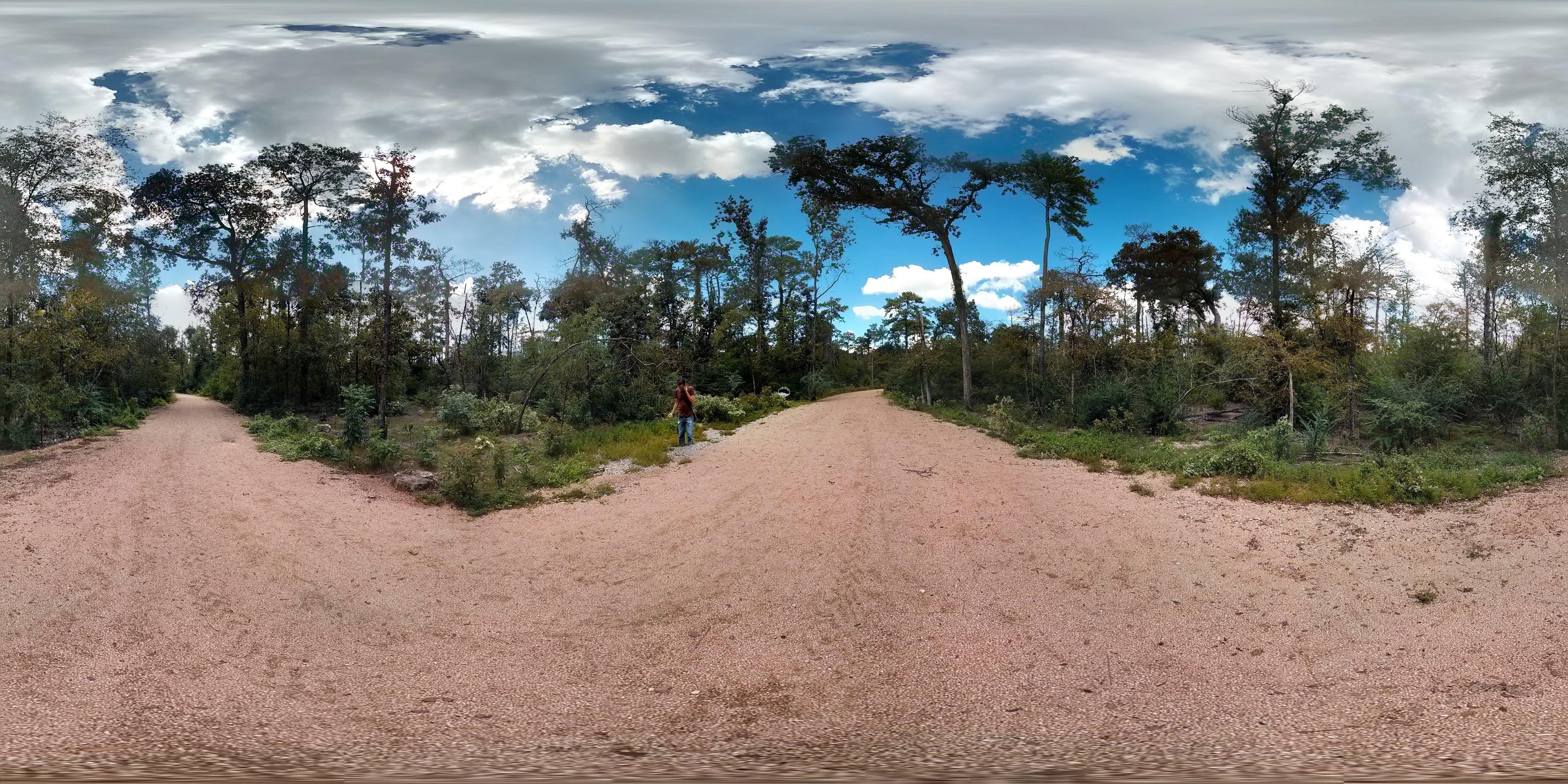 Memorial Park, Houston, TX - panoramio.jpg
