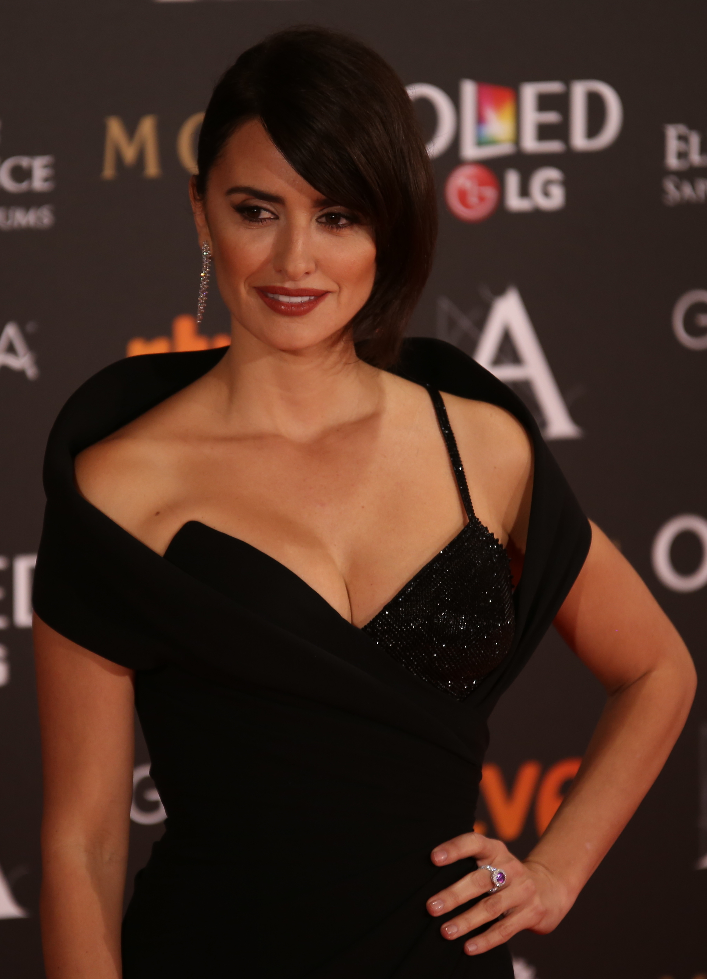 https://upload.wikimedia.org/wikipedia/commons/2/2a/Pen%C3%A9lope_Cruz_at_Premios_Goya_2017.jpg