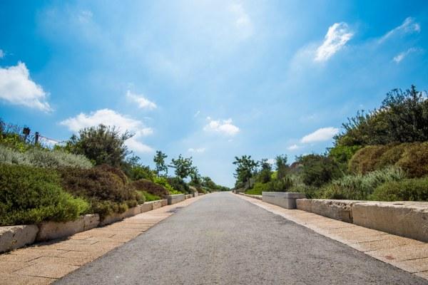 צמחיה, פארק אריאל שרון
