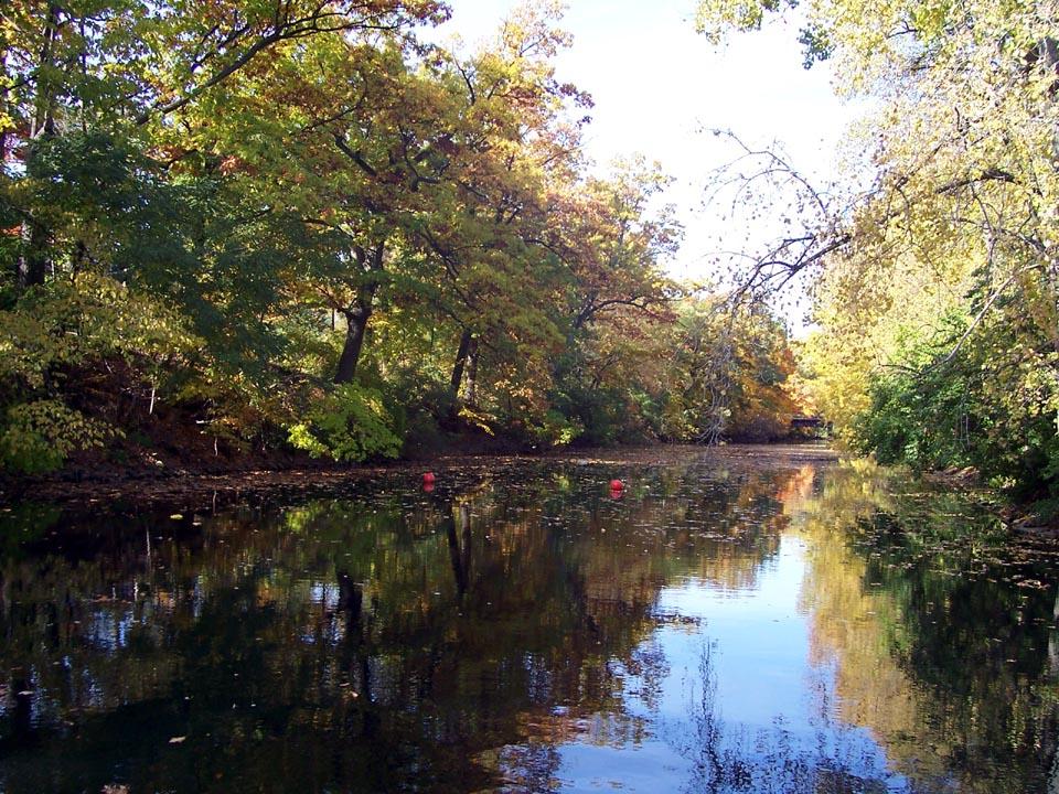 Red Cedar River ~ Red cedar river michigan wikiwand