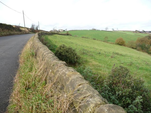 File:Roadside wall - geograph.org.uk - 1564194.jpg