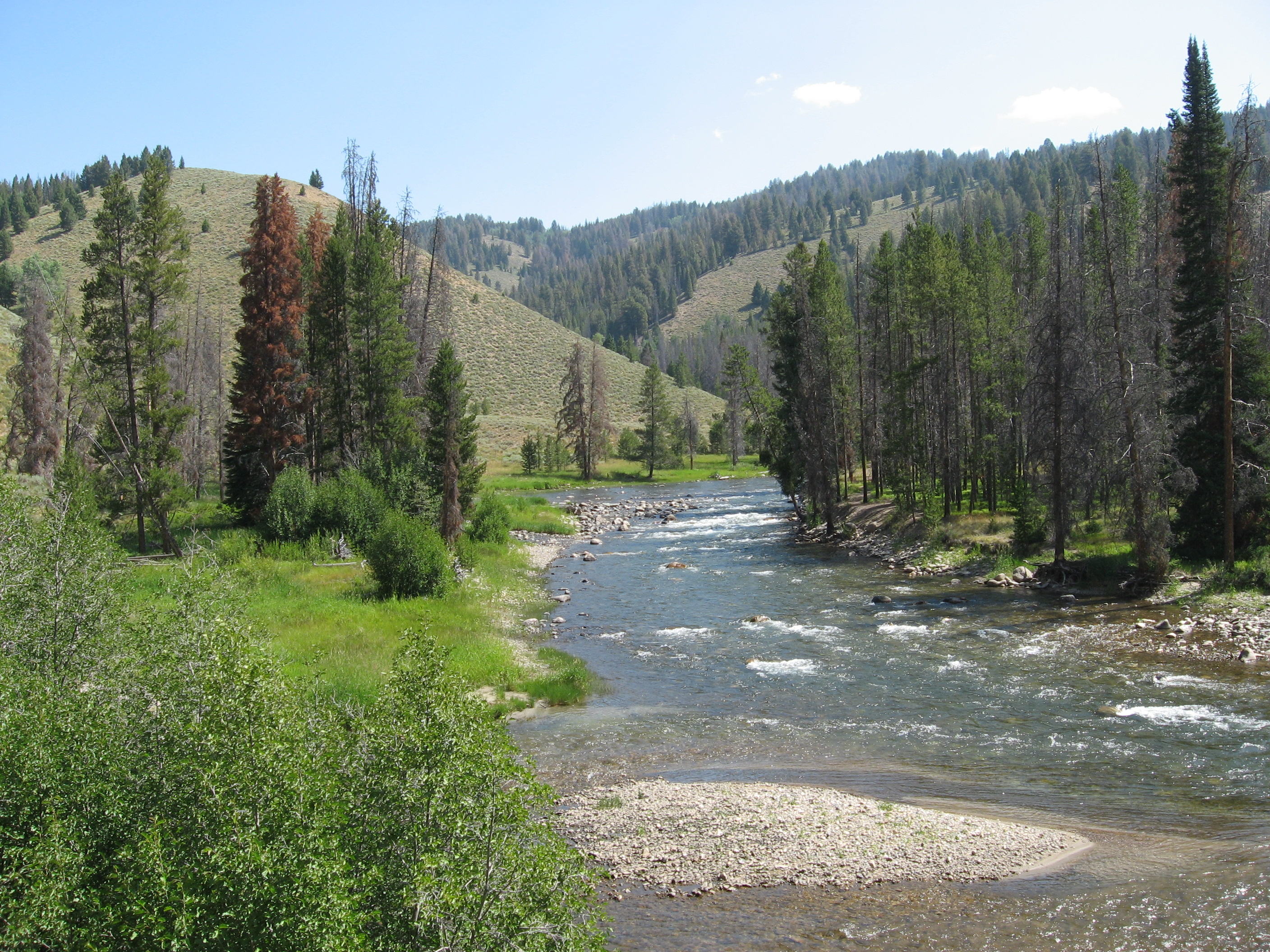 List of rivers of idaho for Salmon fishing washington rivers