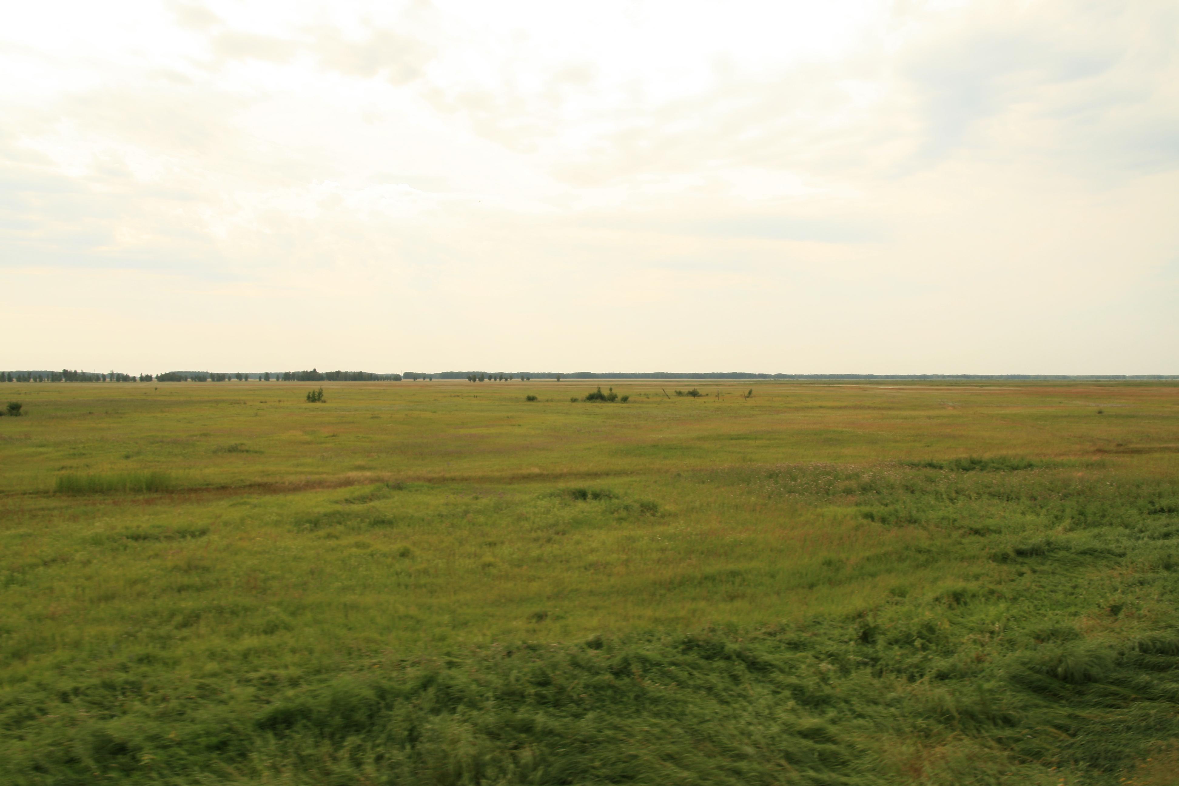 File:Siberian steppe.jpg - Wikipedia, the free encyclopedia: en.wikipedia.org/wiki/file:siberian_steppe.jpg
