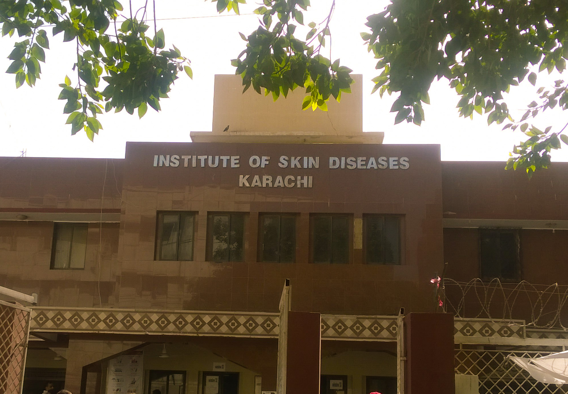 Sindh Institute of Skin Diseases - Wikipedia