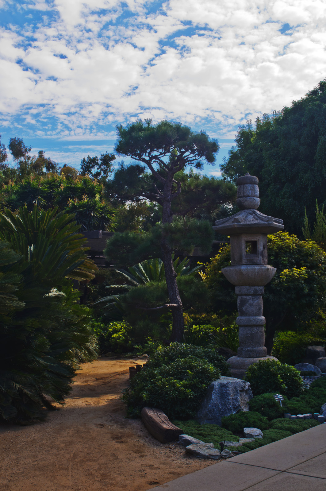 File:South Bay Botanic Garden, Palos Verdes Peninsula (8038134640)