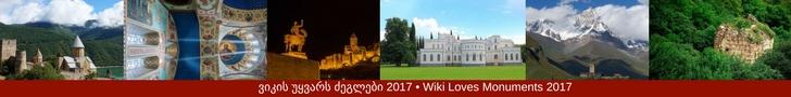 WLM-Georgia baner 2017.jpg