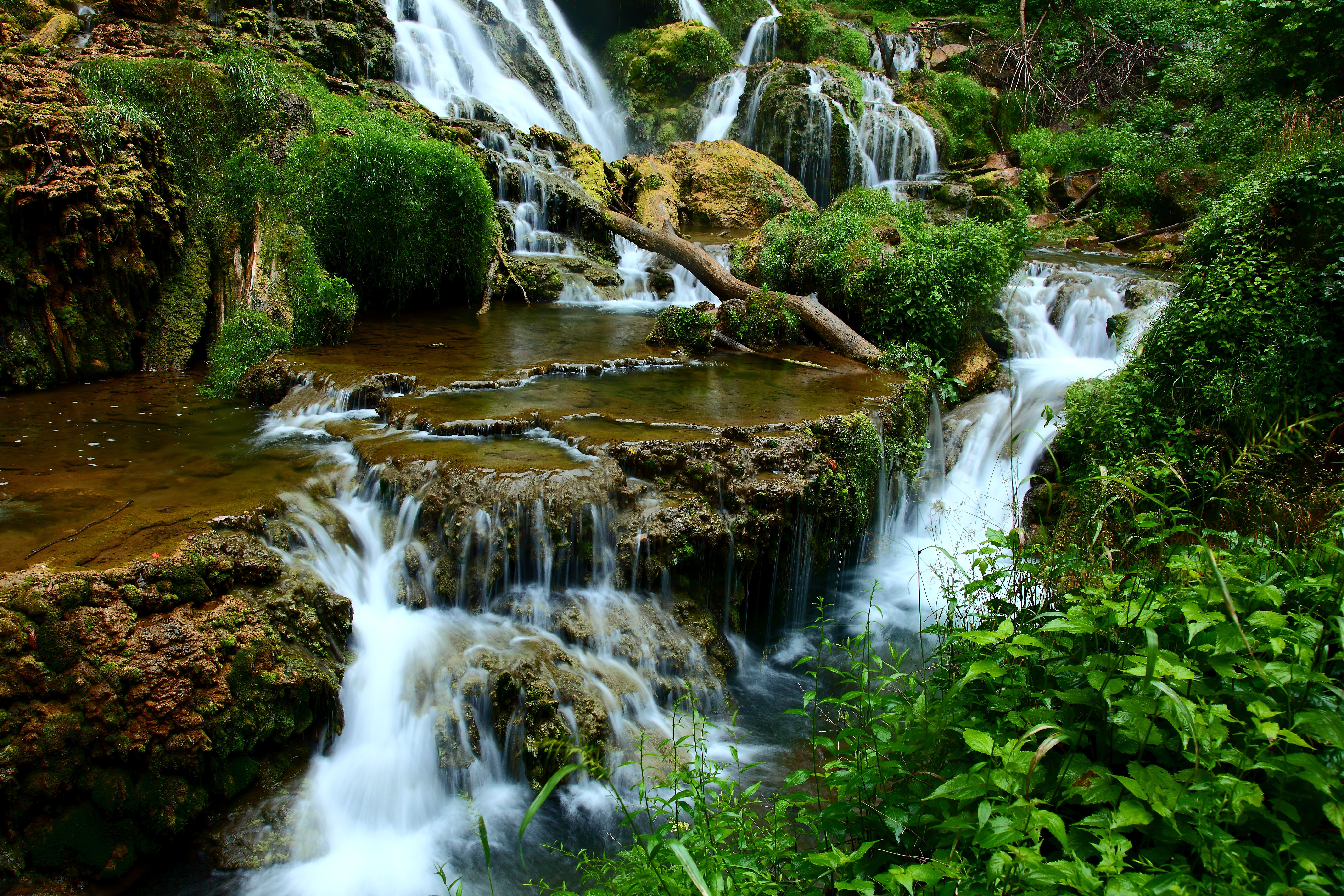 Description Waterfalls-forest-landscape - Virginia - ForestWander.jpg