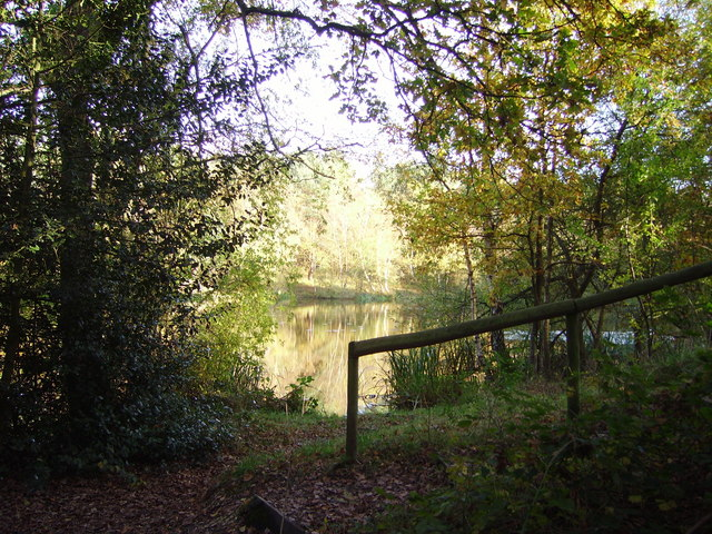Wyndham's Pond on Yateley Common - geograph.org.uk - 653393