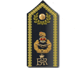Chief of the Air Staff's Warrant Officer - WikiVisually