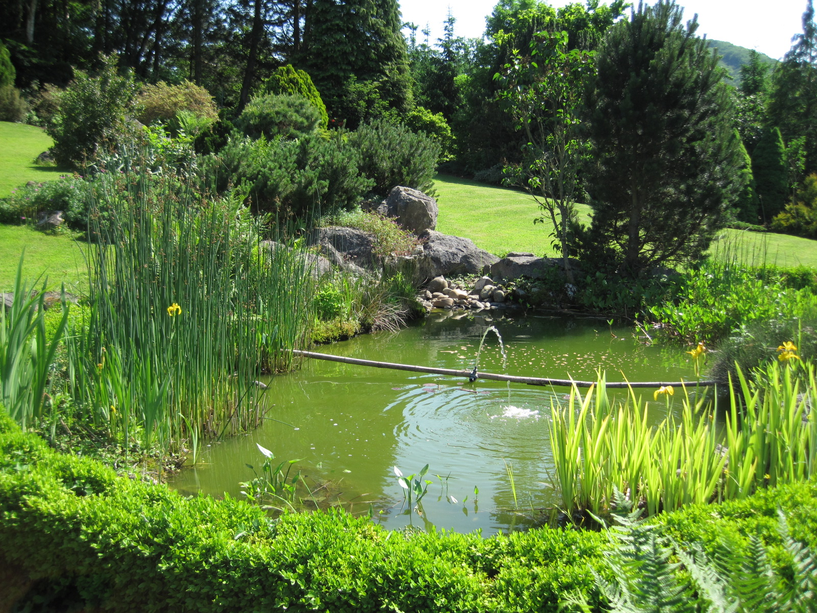 Home green for Bassin de jardin villaverde