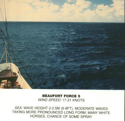 Beaufort_scale_5.jpg