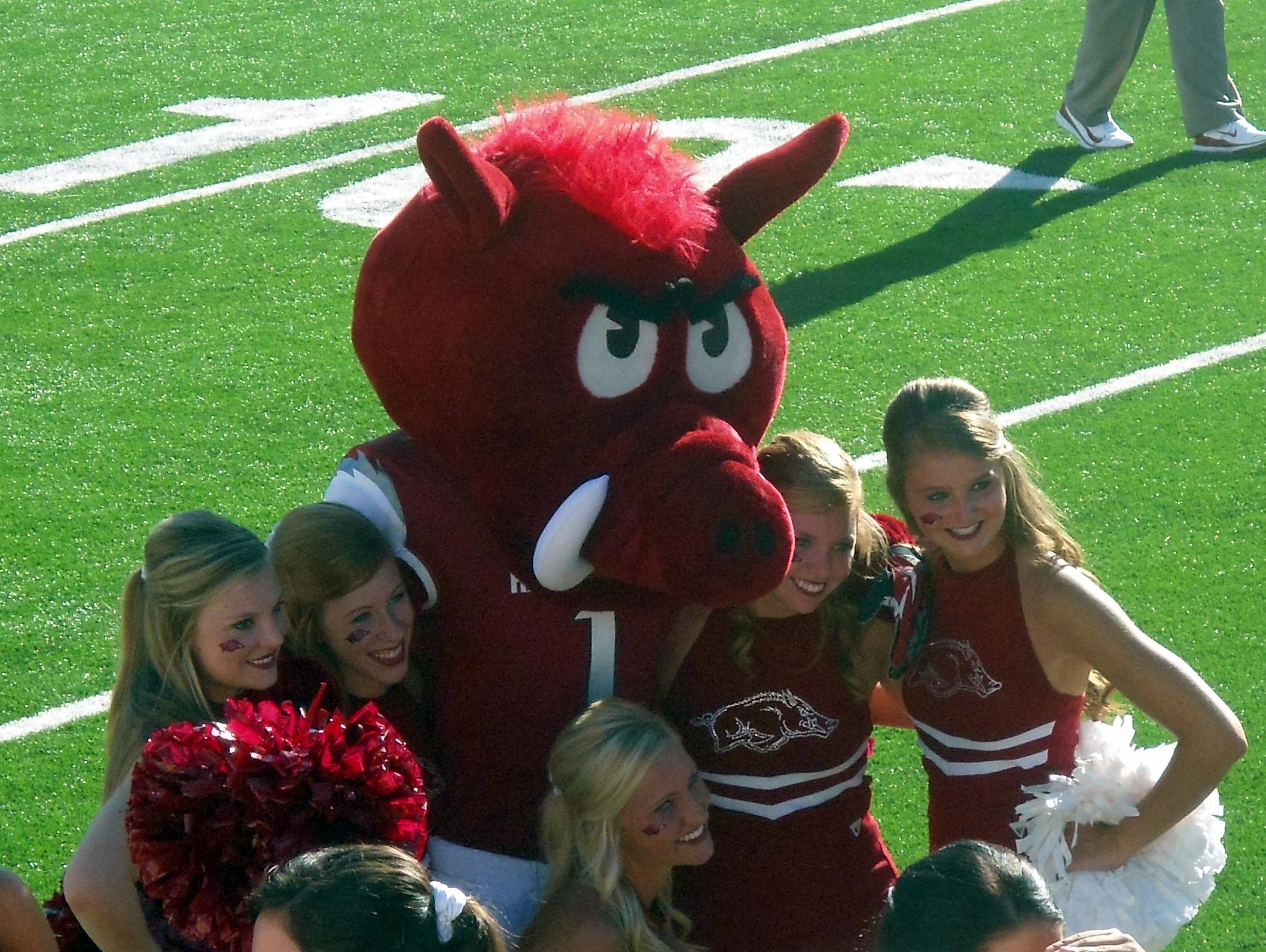 Big Red (University of Arkansas) - Wikipedia 7aabc0144