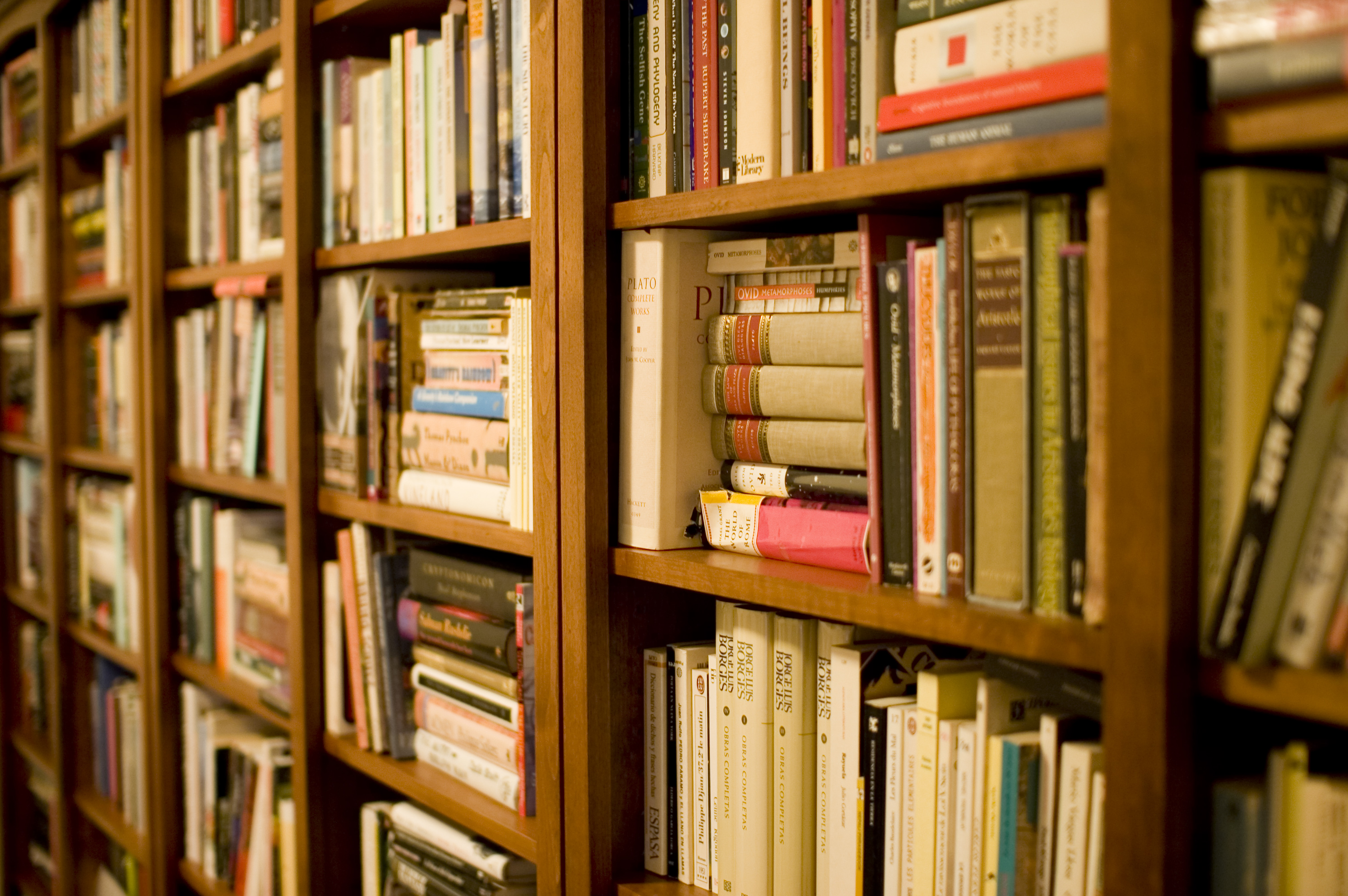 Bookshelves Images Filebookshelfg wikimedia commons filebookshelfg sisterspd