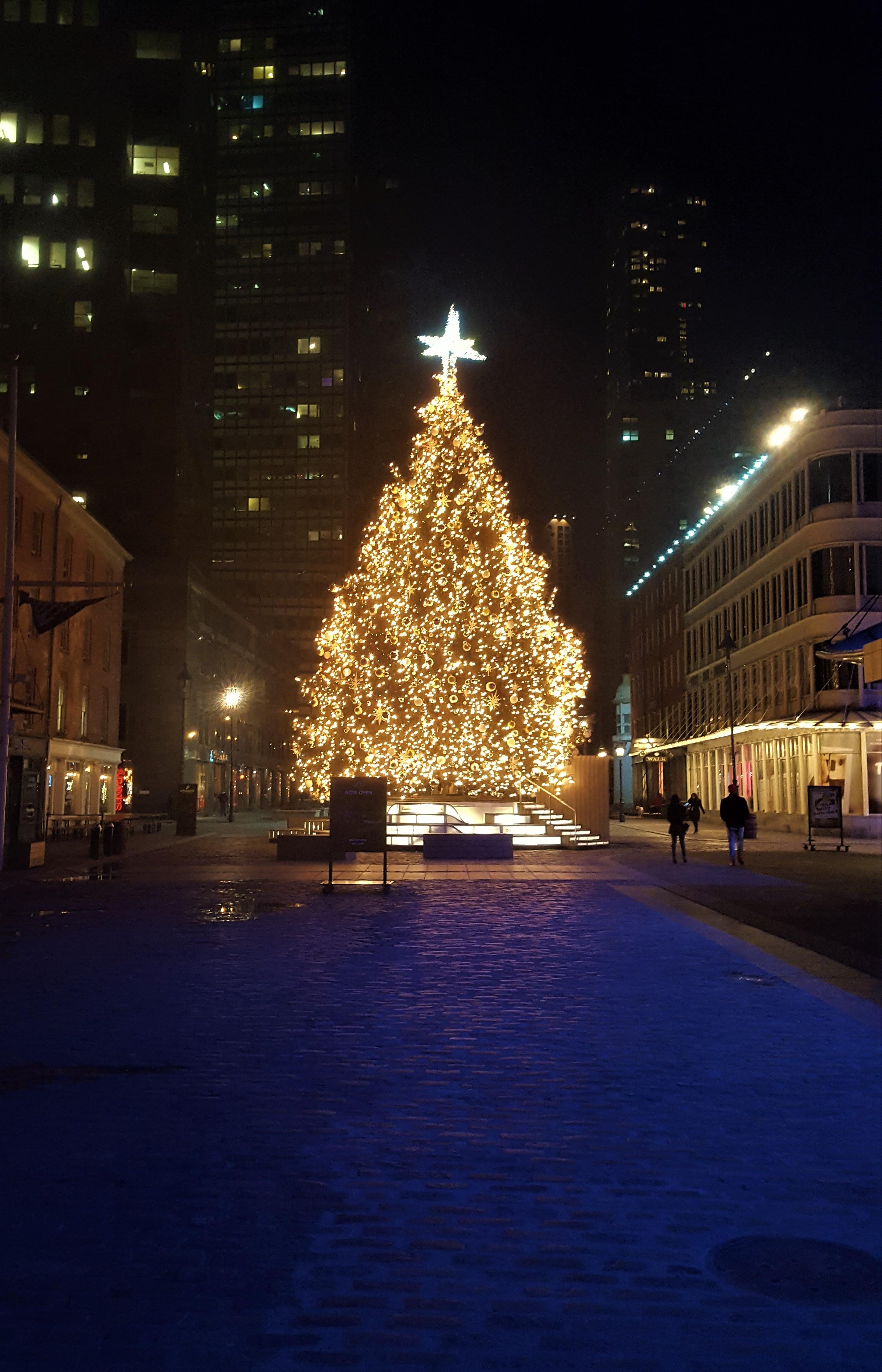 filechristmas tree on fulton st in manhattan at nightjpg