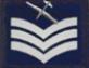 GVCAC Unit Sergeant.png