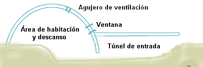 Igloo see-through sideview diagram-es-corregido.png