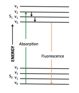 Filejablonski Diagramg Wikimedia Commons