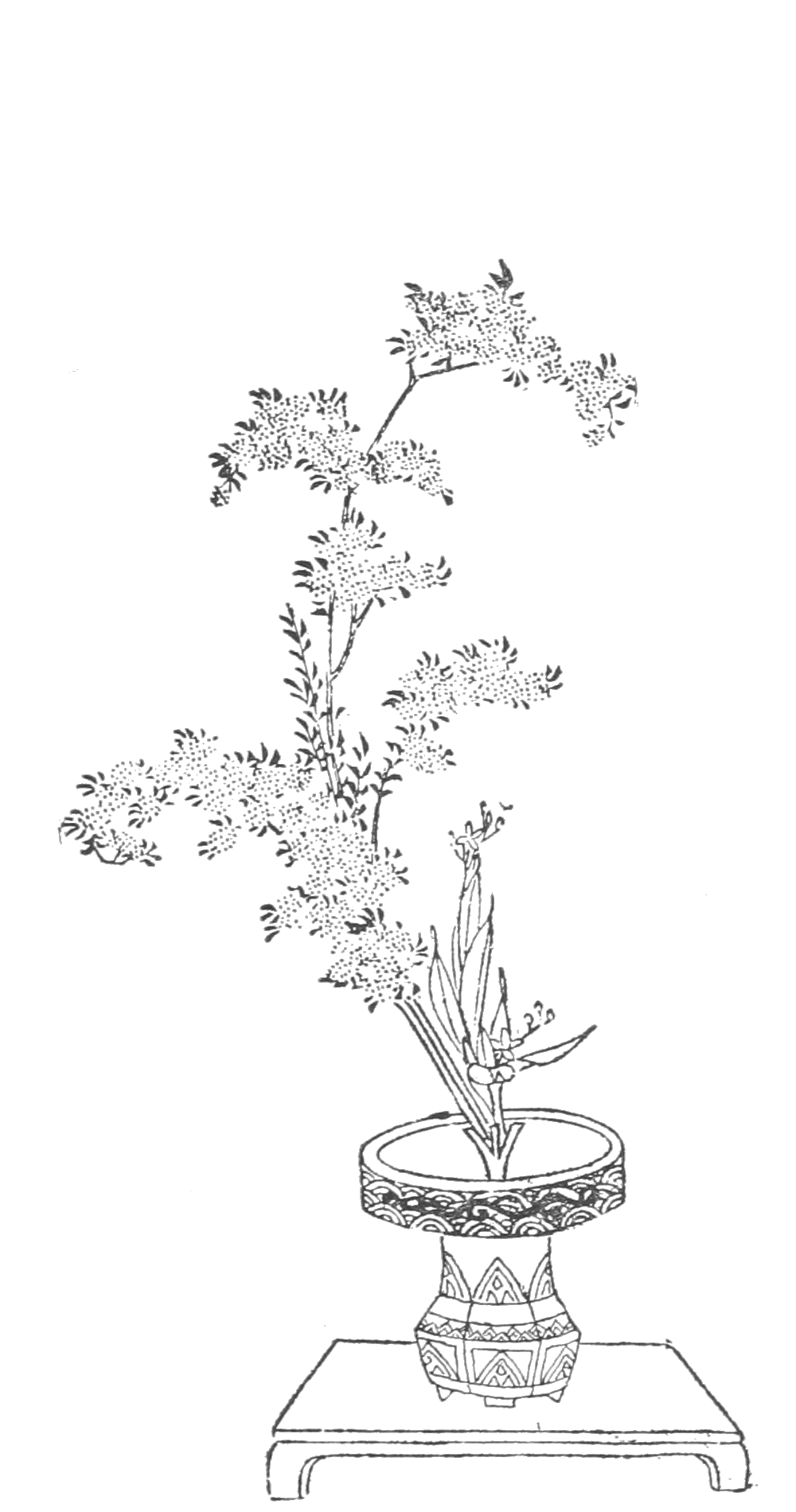 Japanese Flower Line Drawing : File japanese flower arrangement p a wikimedia commons