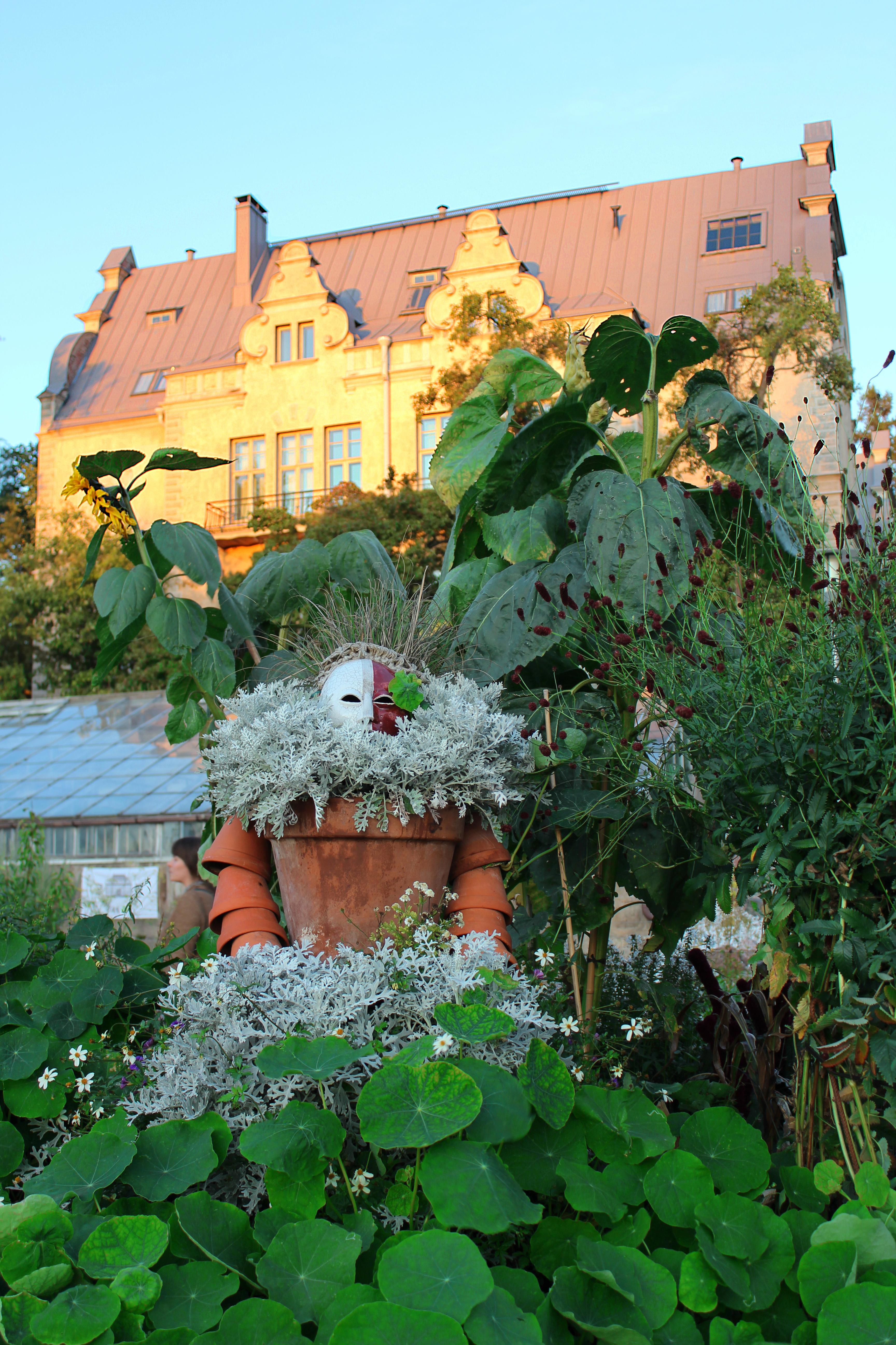 Helsingin Yliopiston Kasvitieteellinen Puutarha Wikiwand