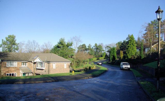 Housing Details  Haste St  Bed  Bath