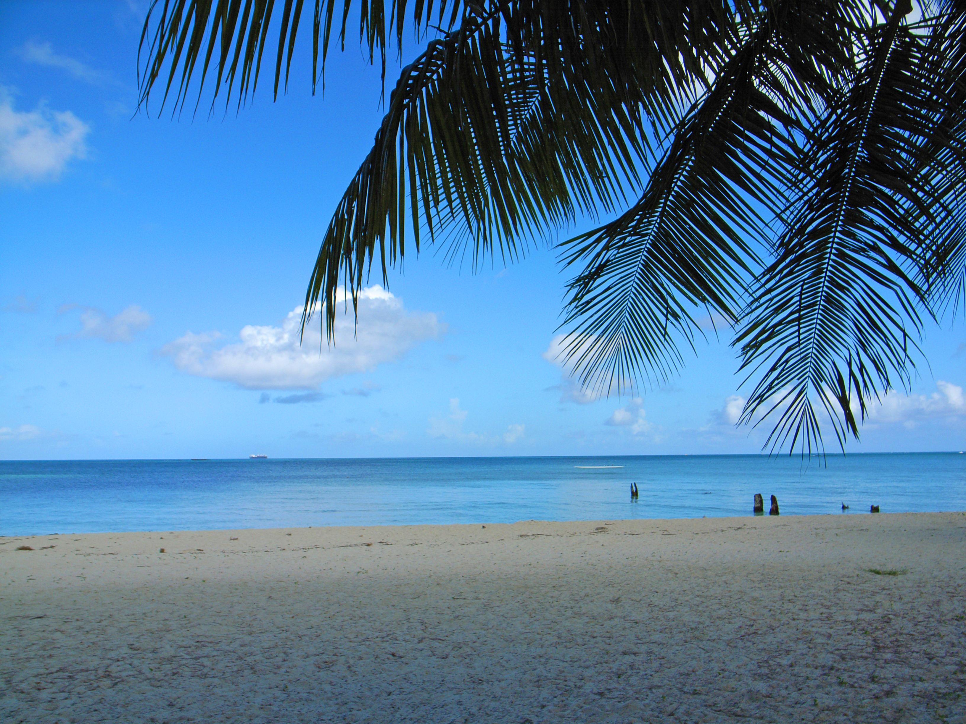 Http Commons Wikimedia Org Wiki File Micro Beach 530316786 Jpg