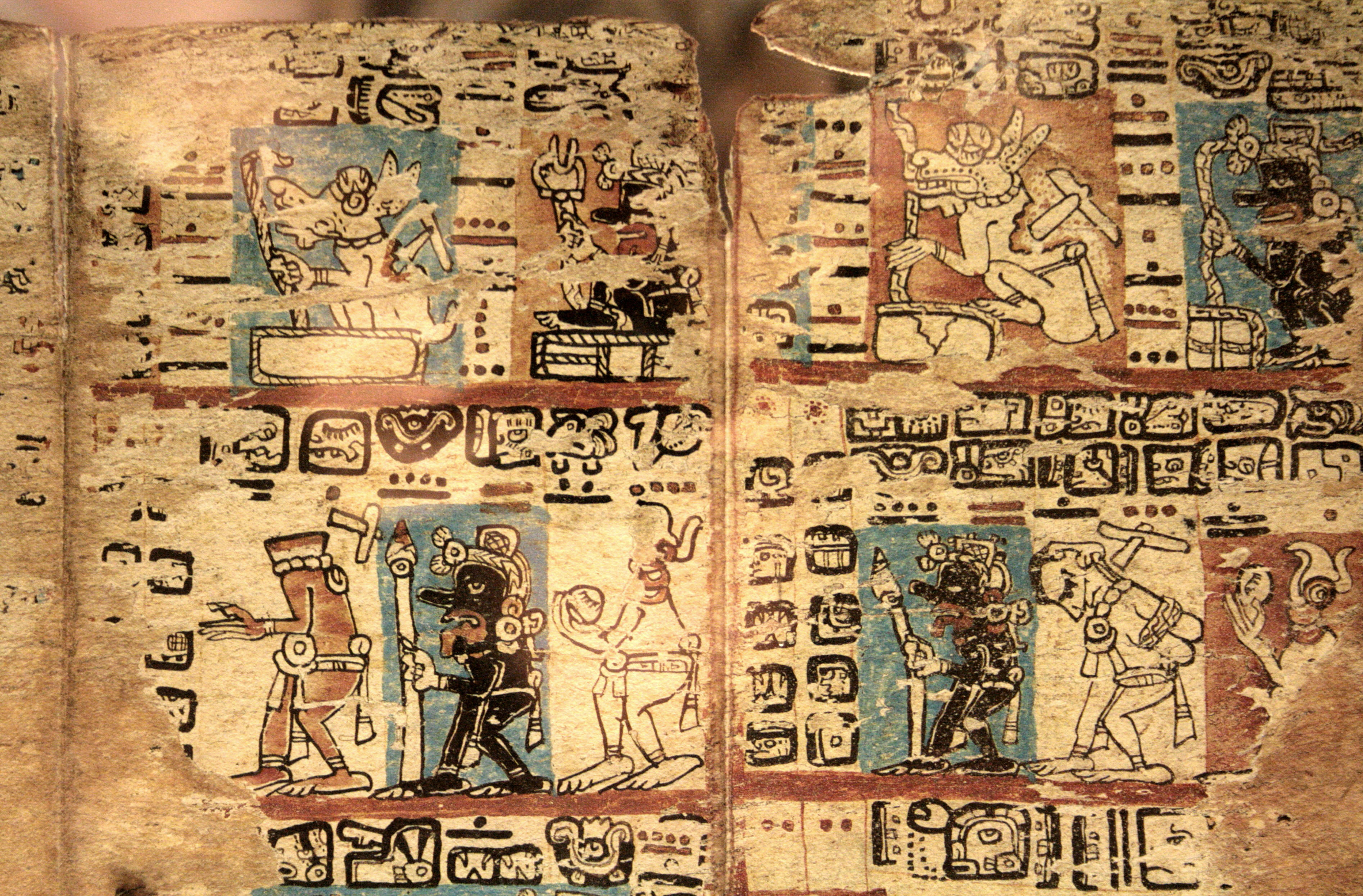 surviving the spanish conquest The handful of maya books through which we know about their civilisation grows one larger as archaeologists confirm grolier codex to survive spanish conquest.