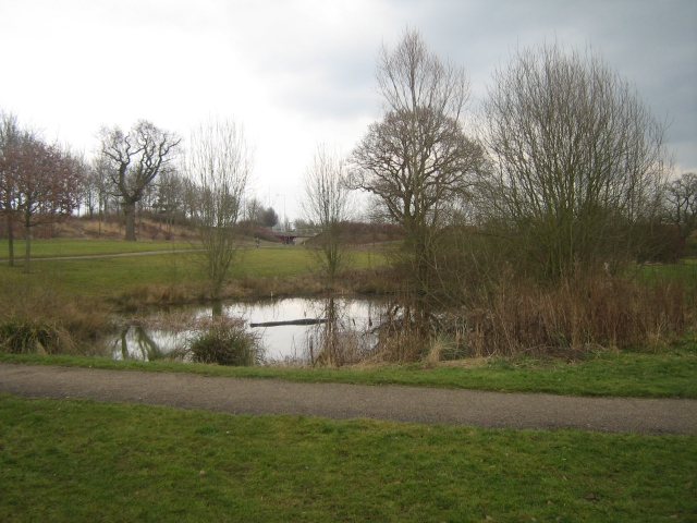 Park pond one - geograph.org.uk - 1226436