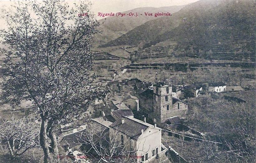 Rigarda