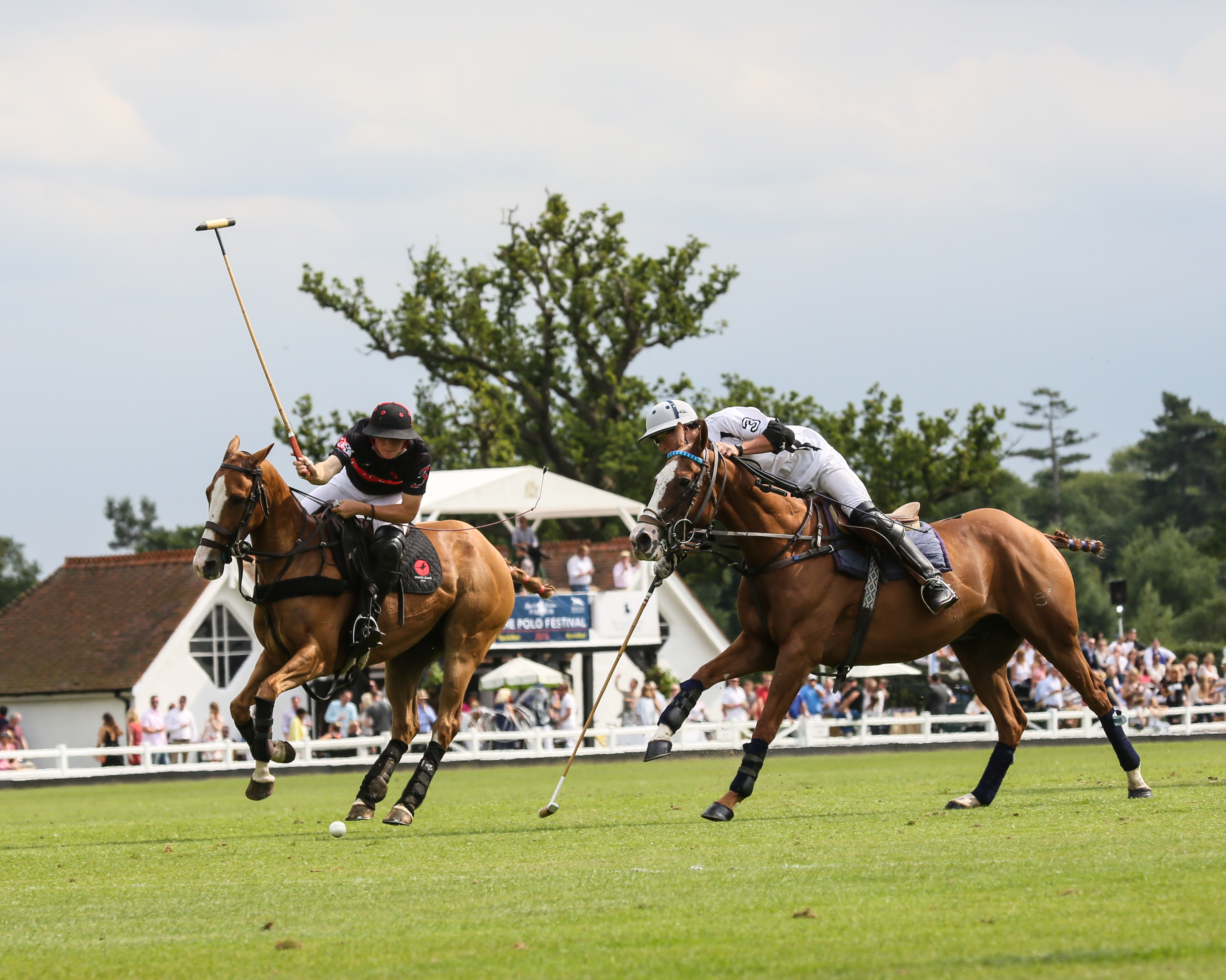 Royal County of Berkshire Polo Club - Wikipedia