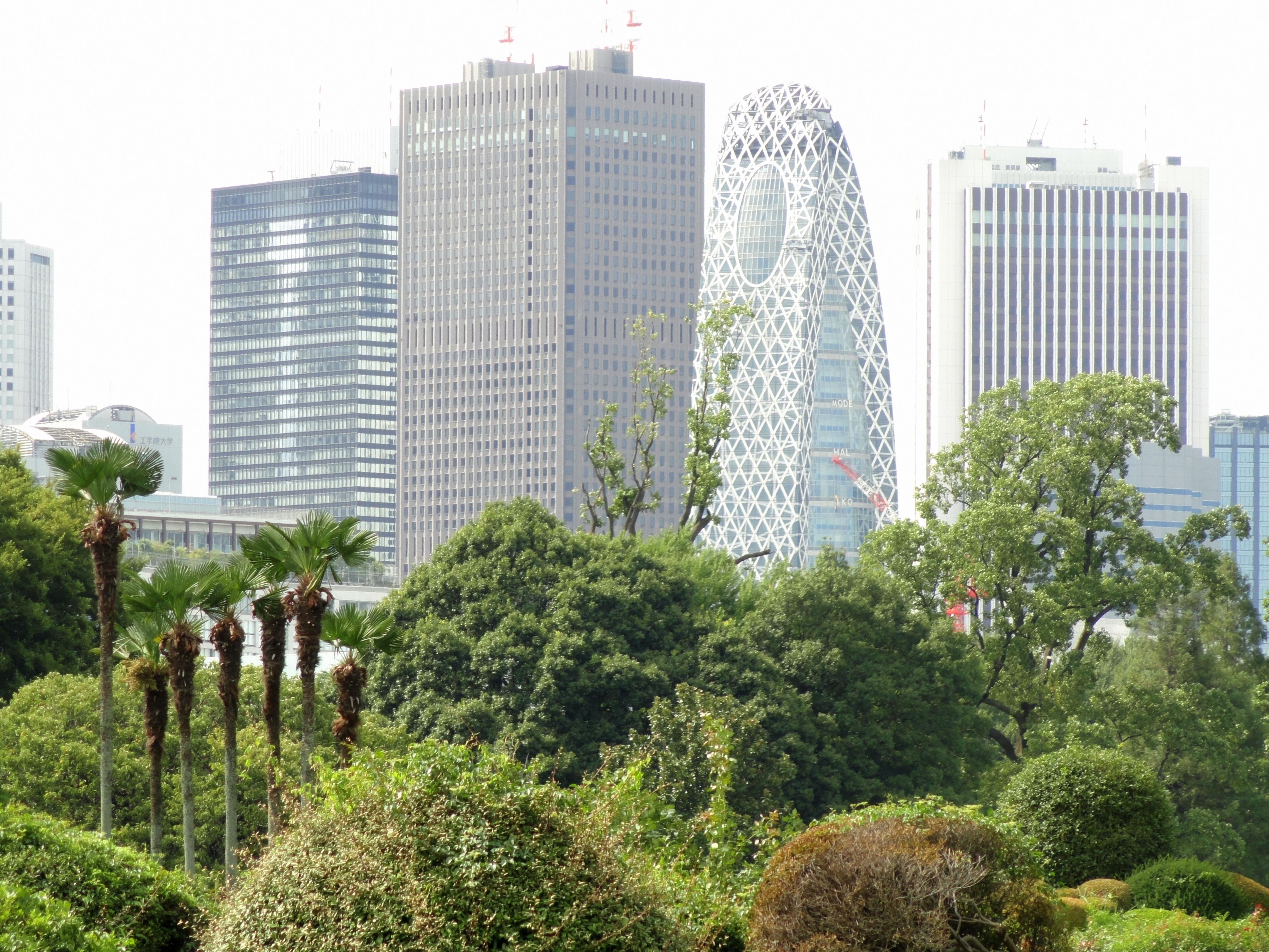 File:Shinjuku Gyoen National Garden - DSC05156.JPG - Wikimedia Commons