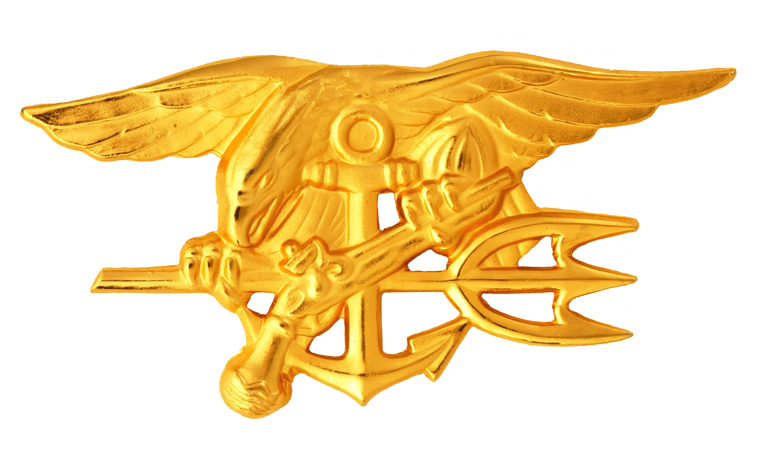 a description of the united states navy seals in american special forces They are the highest paid enlisted operators in the military and for good reason   in order to be a us navy seal, one must be a native-born or naturalized   there is not an adjective in the english language that can adequately describe  the.