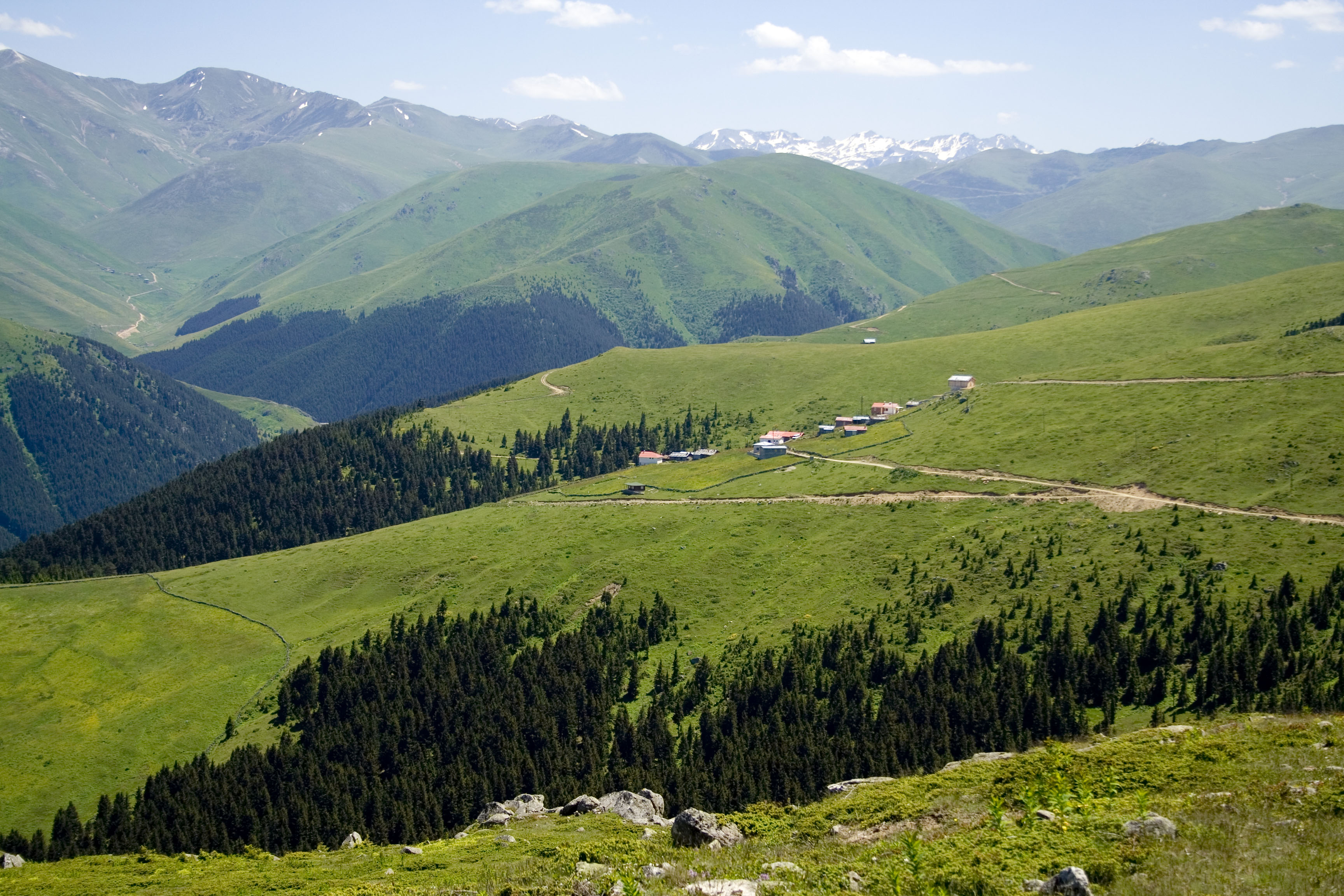 [Afbeelding: View_over_mountain_plataeu_near_%C3%87aykara.jpg]