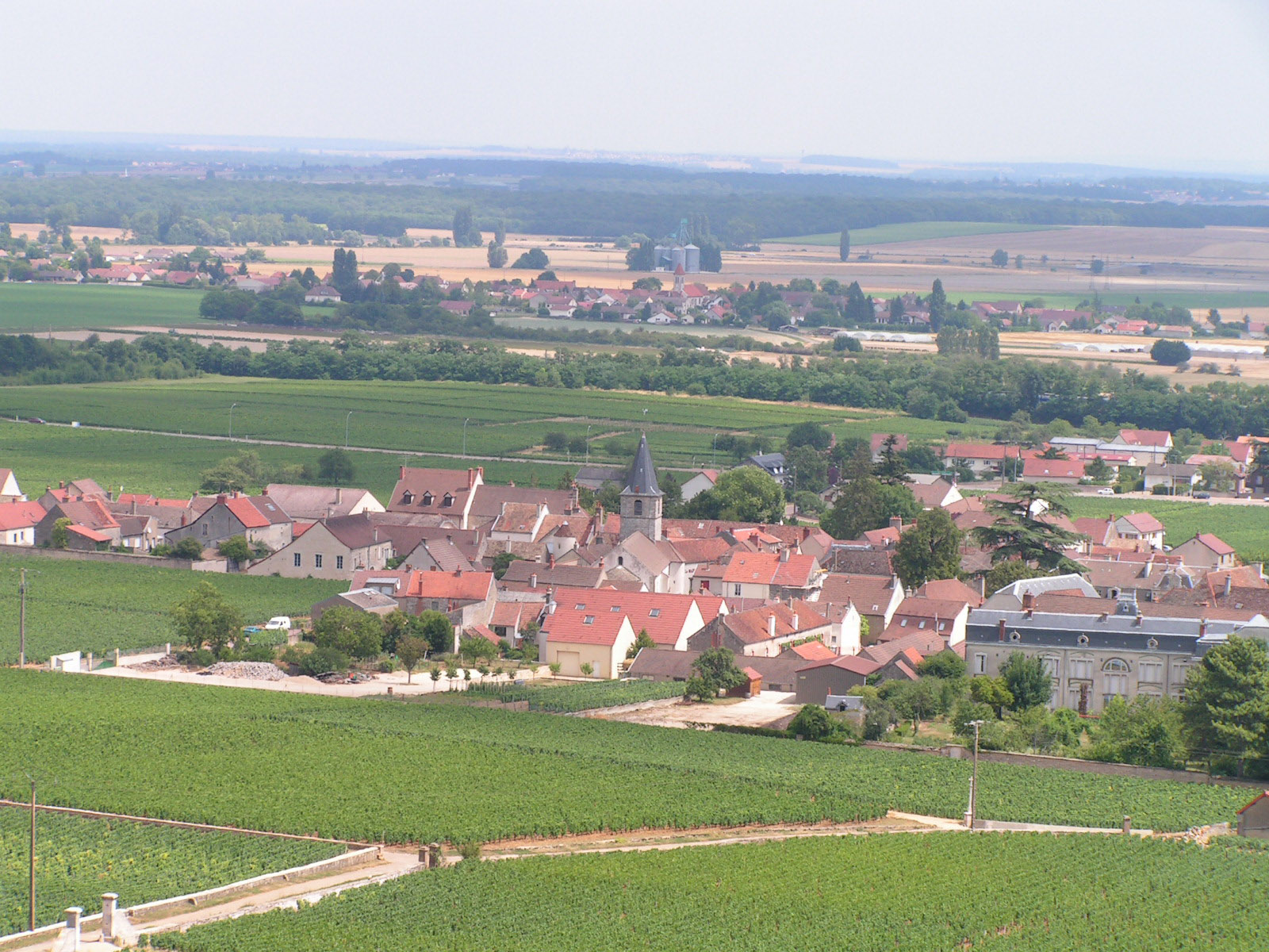 https://upload.wikimedia.org/wikipedia/commons/2/2b/Vosne-Romanee.jpg
