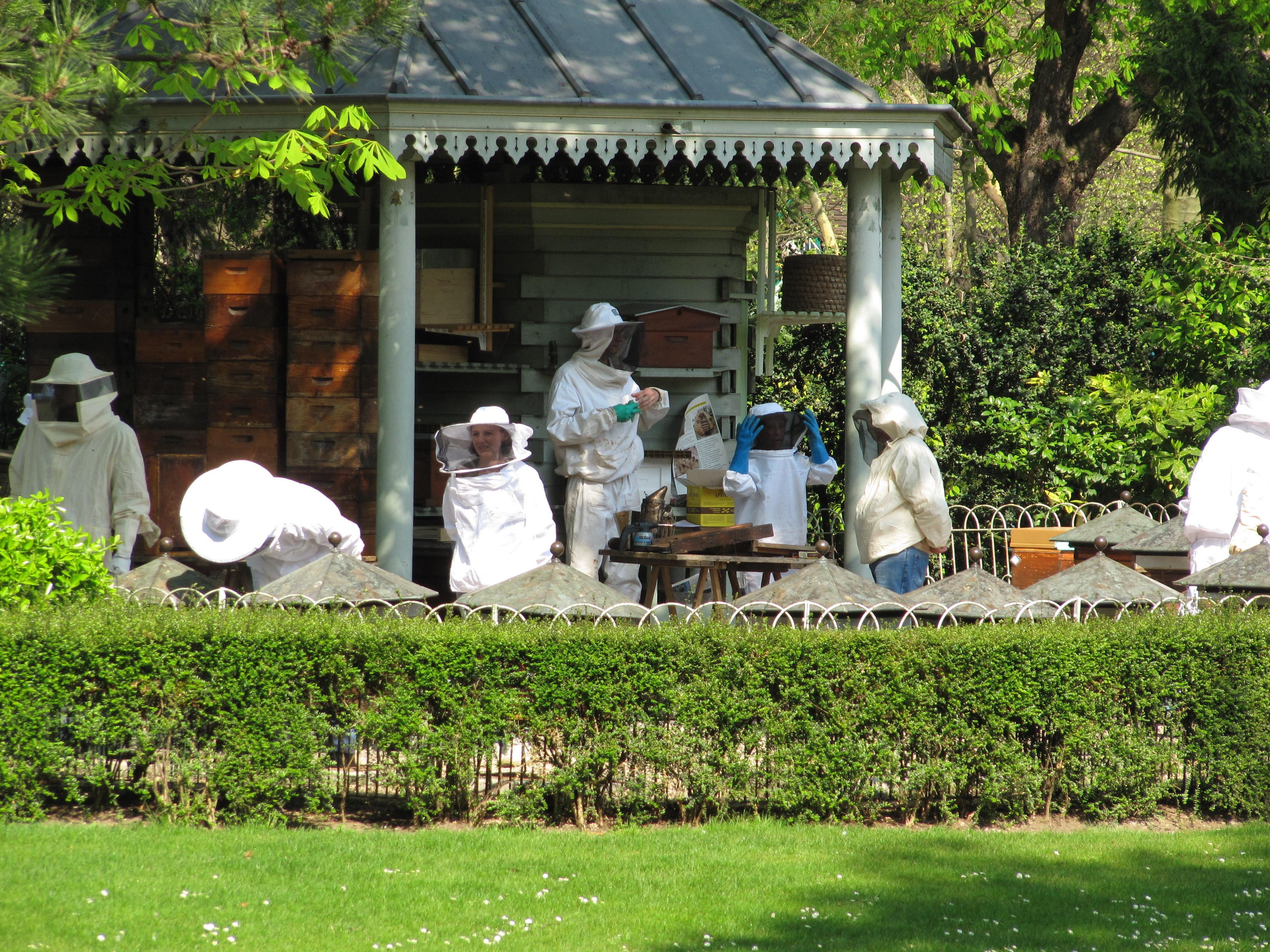 File Apiculteurs des ruches du Jardin du Luxembourg JPG