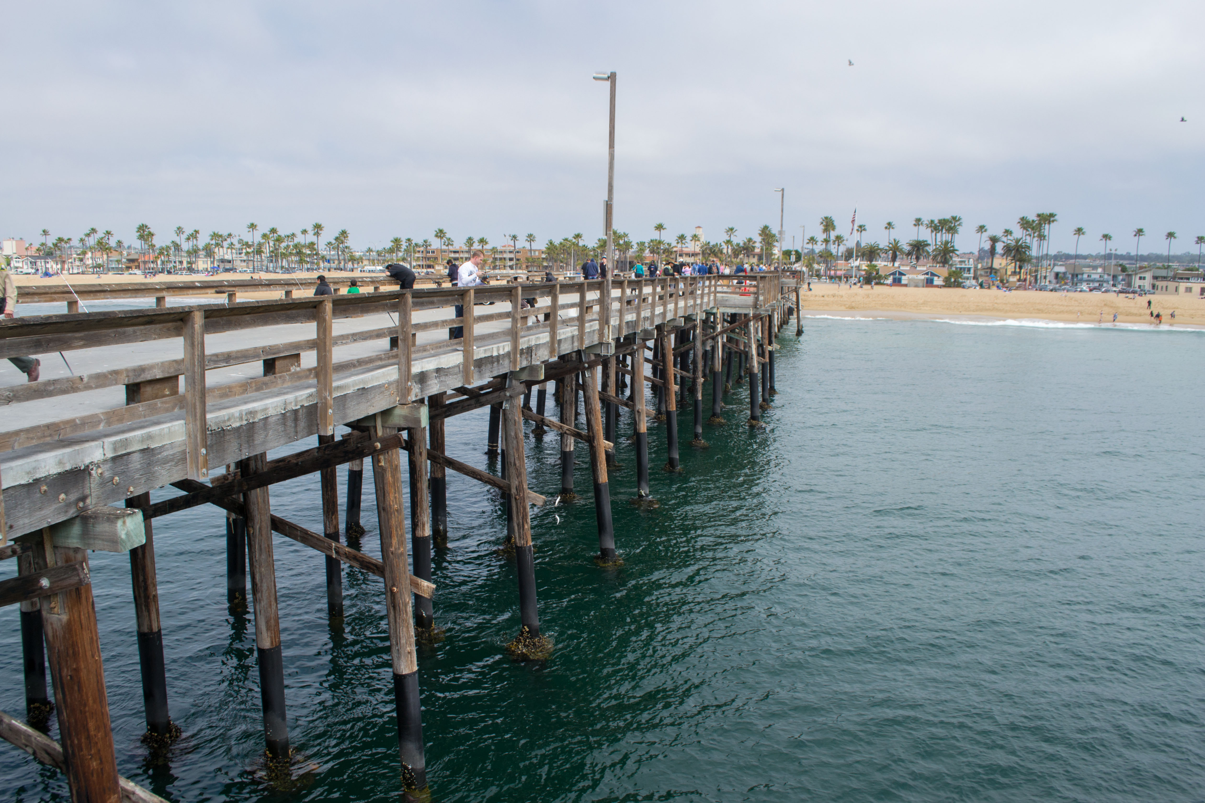 file balboa pier jpg wikimedia commons