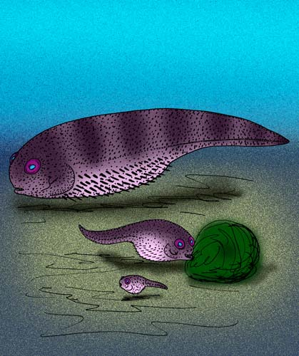 Delphyodontos