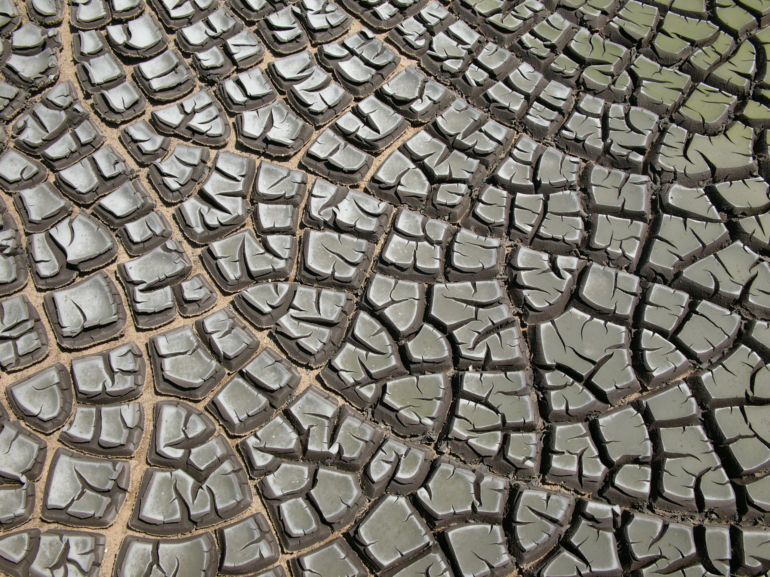 Image result for the cracks wikipedia