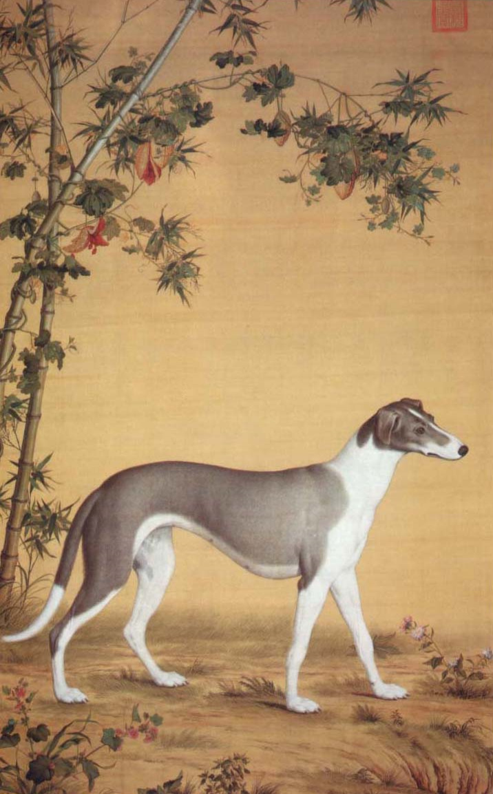 Dog Breed With Word Chinese In It