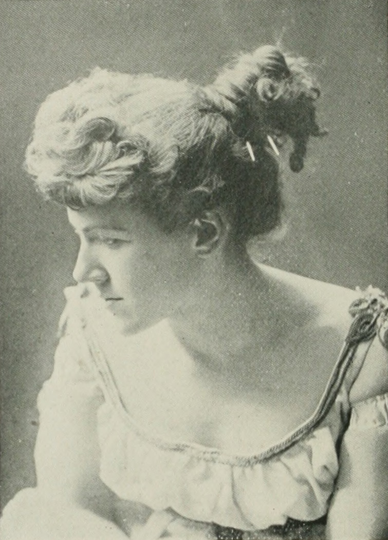 ELLA WHEELER WILCOX A woman of the century (page 782 crop).jpg