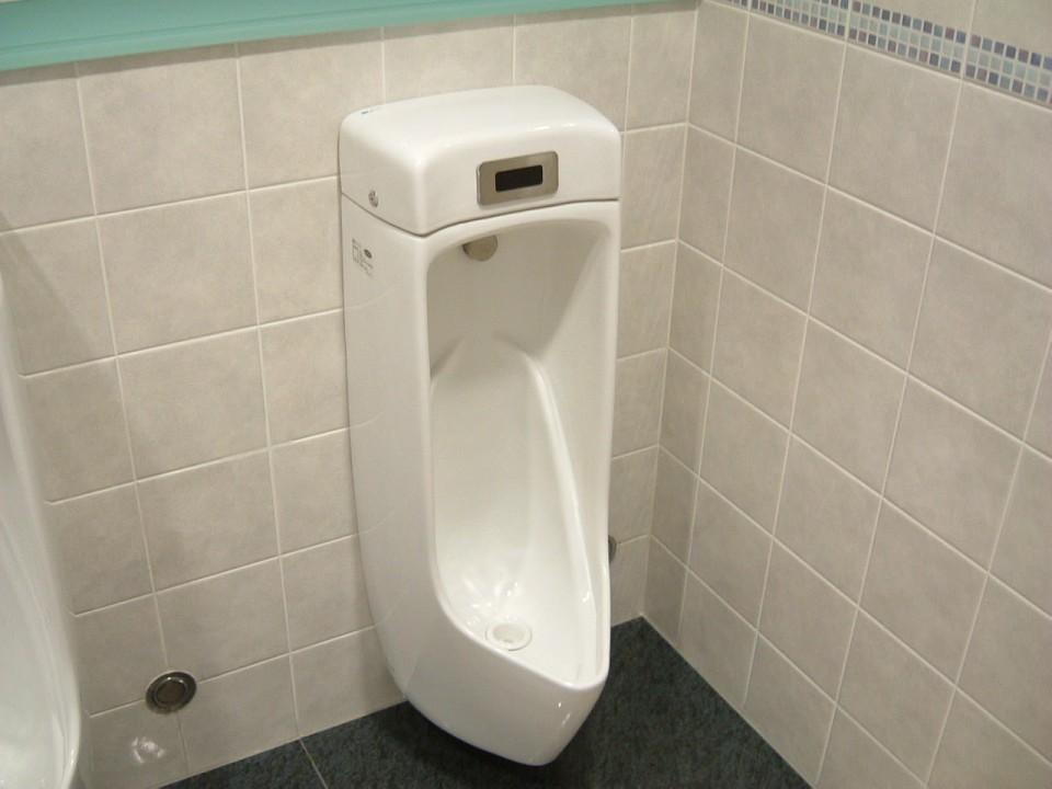 Alfa Img Showing Urinal Toilet