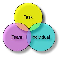 Functional leadership model
