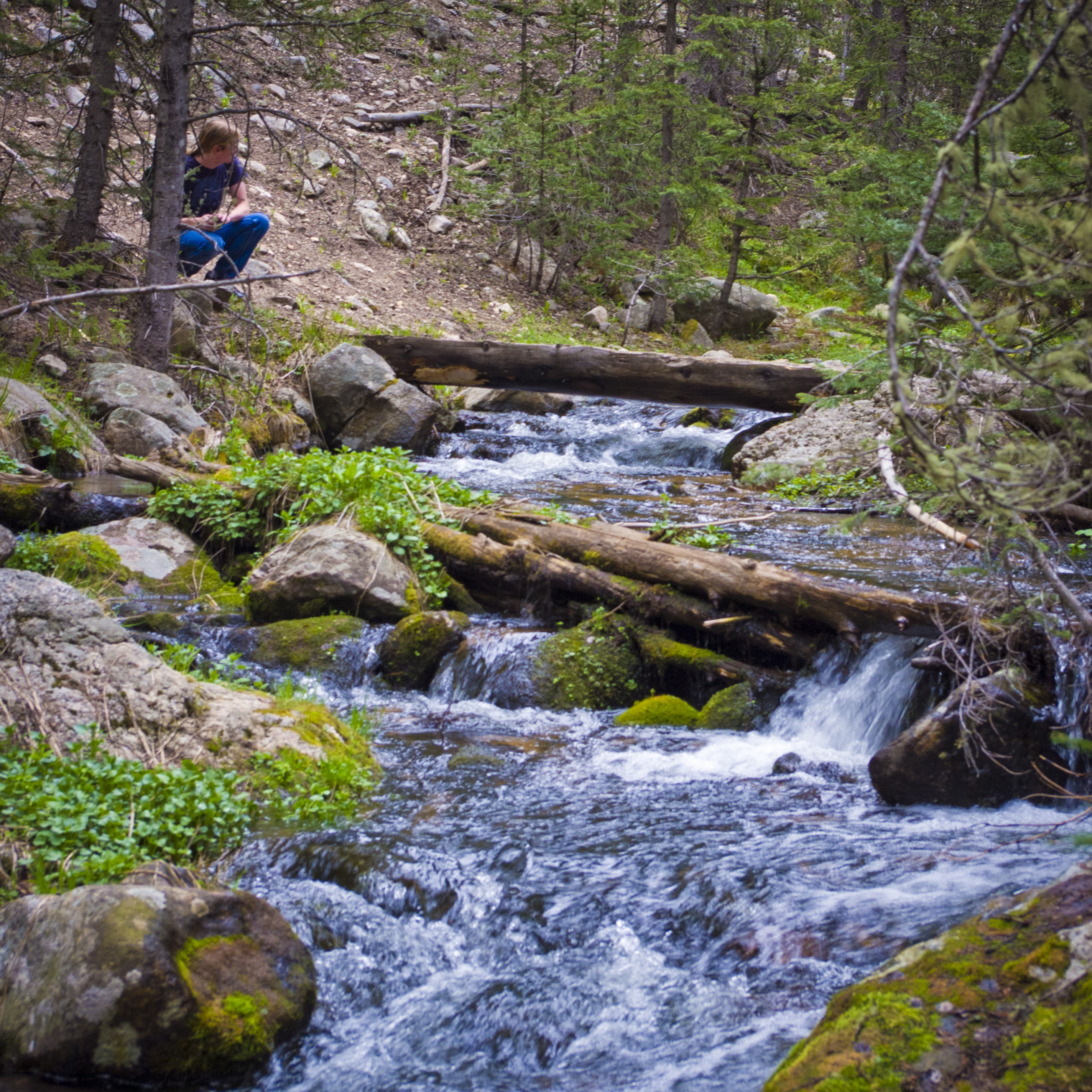 Holy Mountain Stream