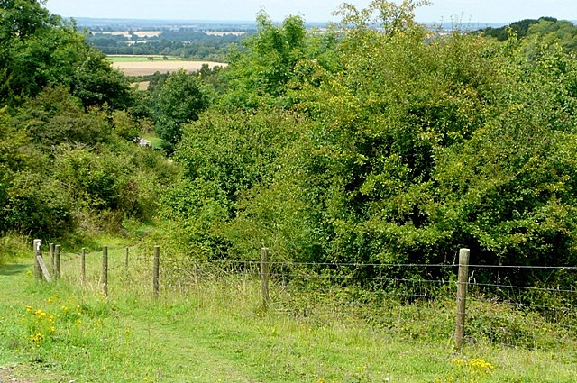 Oxfordshire Way - geograph.org.uk - 1435248