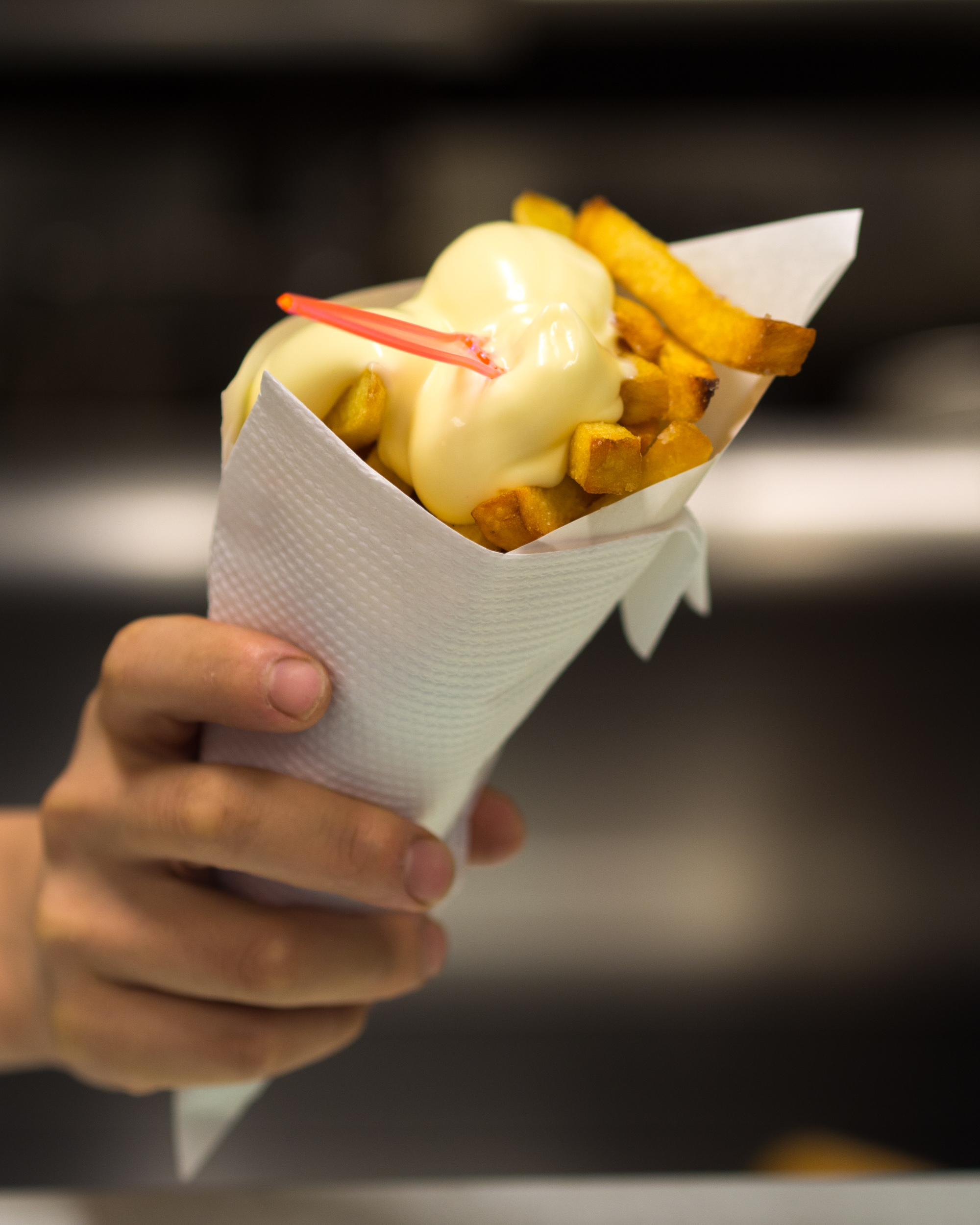 Image result for Friet and mayo