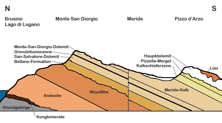 Geologische Profil des Monte San Giorgio (UNESCO-Welterbe in Schweiz und Italien). Profilo- geologico Monte San Giorgio-DE