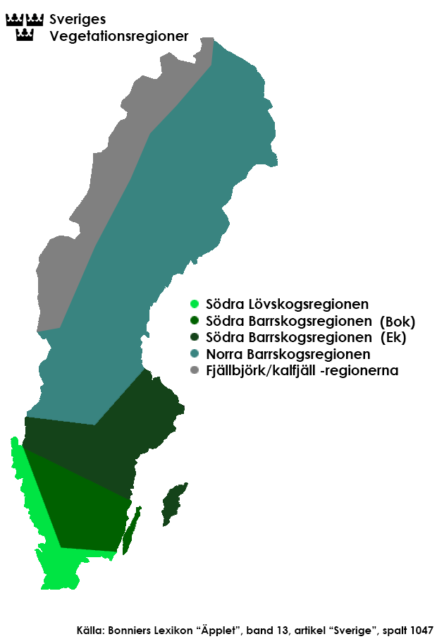 sveriges yta