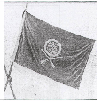 The Army Flag of Tsinghua School, 1916.png