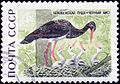The Soviet Union 1969 CPA 3794 stamp (Black Stork) cancelled.jpg