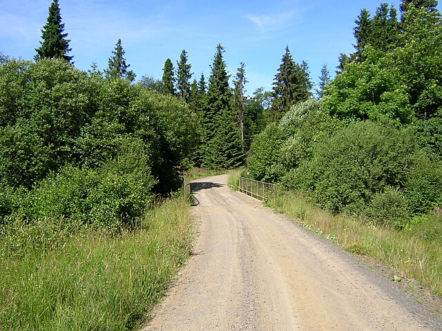 Track in Kielder Forest - geograph.org.uk - 204450
