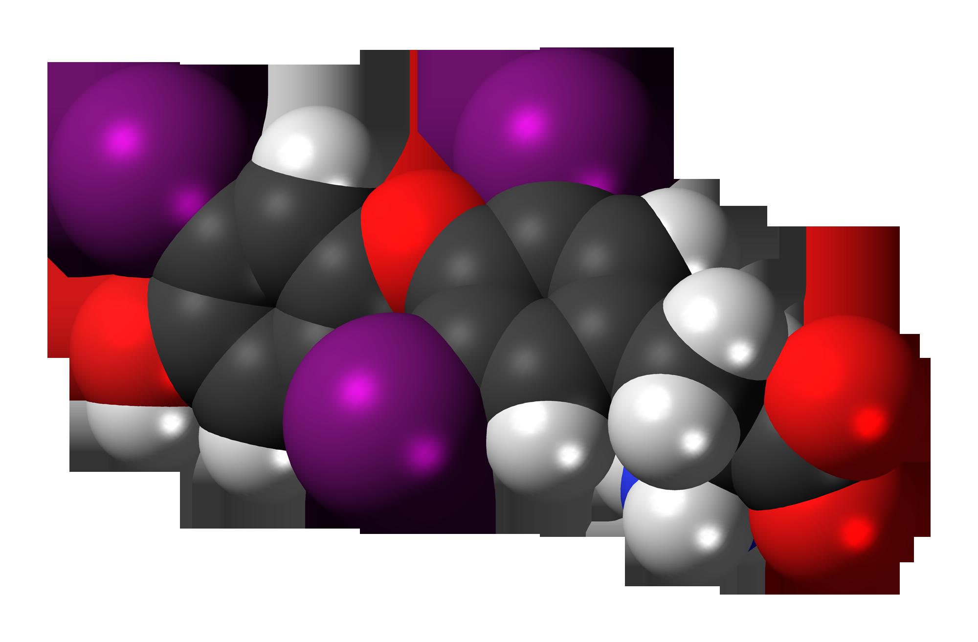Thyrotropin-releasing hormone-Peptide, Melaonin-Peptide ...